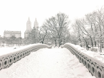 Central Park Winter - Snow on Bridge - New York City