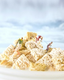 Cereal - Mini Wheats