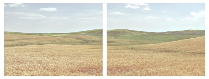Turning to Gold Diptych