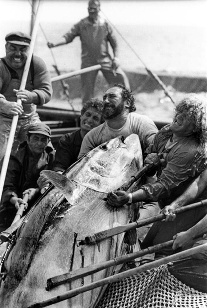 Fisherma