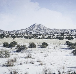 New Mexico Winter