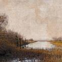 Scotch Pond II