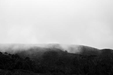 Fog Over Montana De Oro