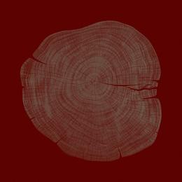 Stump 1 - Variation 27