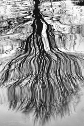 Lapworth Reflections Triptych 2