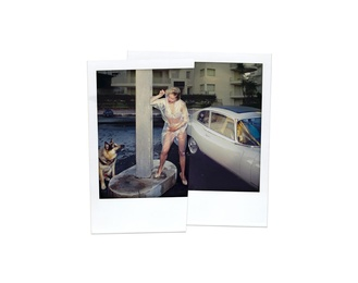 D With Unknown Male Dog, Cannes 1986