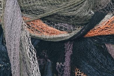 Fishnet Study IX
