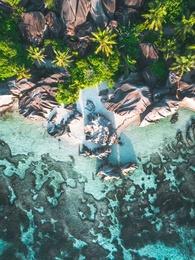 Endangered Paradises 11