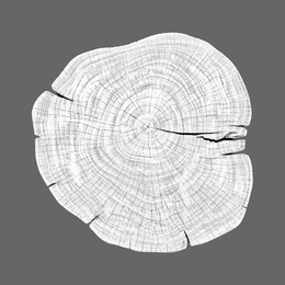 Stump 1 - Variation 10