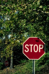 Two Stop Signs