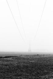 Foggy Landscape II