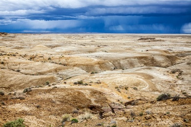Bisti / De-Na-Zin Wilderness, NM I