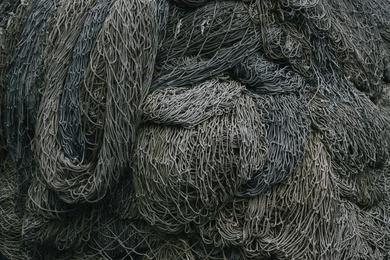 Fishnet Study #18