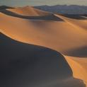 Dunes in Morning - Mesquite Flat