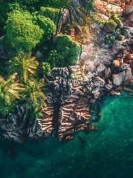Endangered Paradises 12