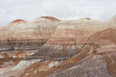 Painted Desert Study X