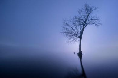 Misty Morning on the Susquehanna #3