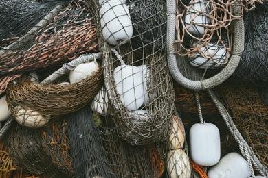 Fishnet Study #11