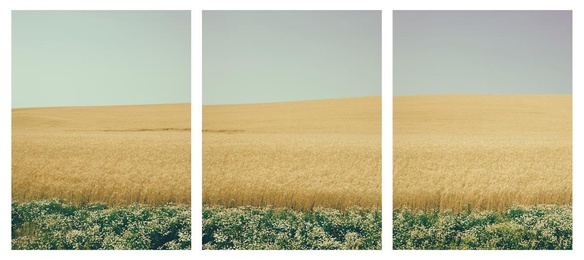 Below the Surface Triptych
