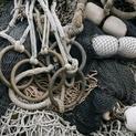 Fishnet Study #5