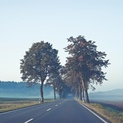 Early Morning Road