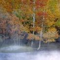 Rush Creek Mist