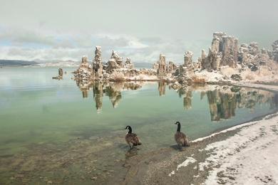 Snow Storm at Mono Lake #1