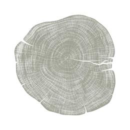 Stump 1 - Variation 8