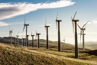 The Wind Farm #8