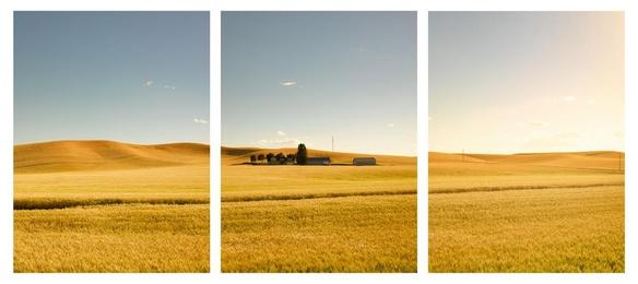 Golden Castle Triptych