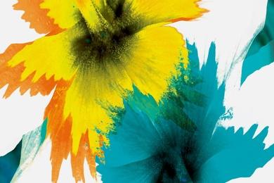 Yellow Aqua [Hor]