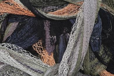 Fishnet Study VIII