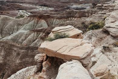 Painted Desert Study XI