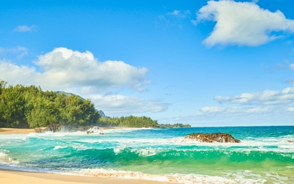 Paradise Beach - Kauai