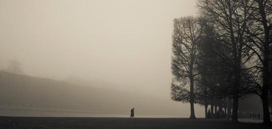 Man in Mist