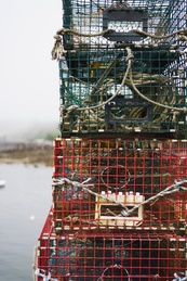 Lobster Cages 2