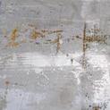 Fields of Rust 1