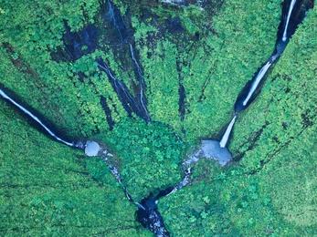The Green Paradise - Kauai