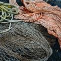Fishnet Study #4