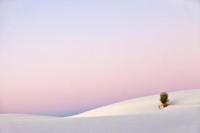 White Sands Sunrise 1